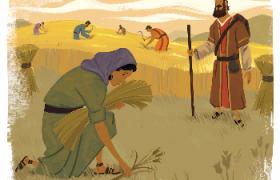路得记4:波阿斯的禾田(陈鸽)讲章